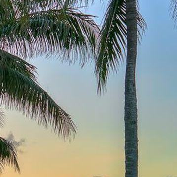 Palm_Beach_Gardens
